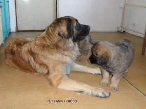 Furinka se svým potomkem Frodkem