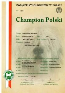 leonberger Sedmidomky, Erki champions